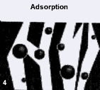 Adsorption mechanism
